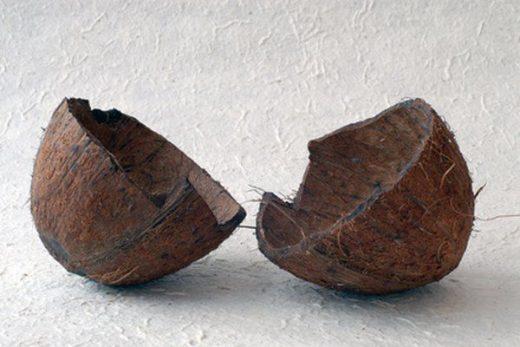 fungsi arang batok kelapa dalam penjernihan air