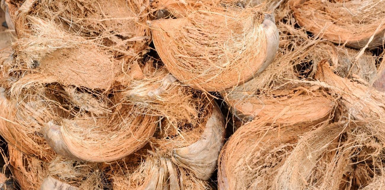 manfaat serat sabut kelapa